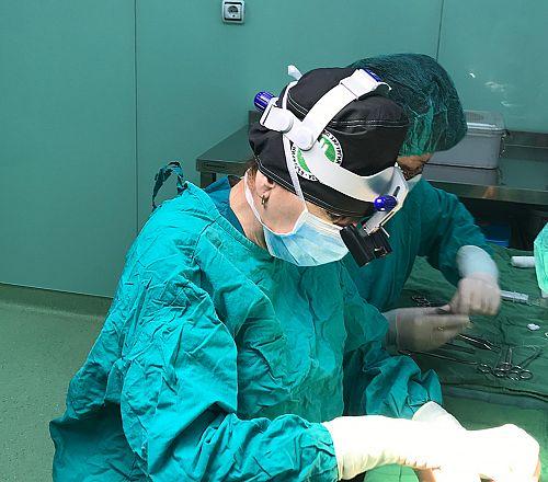 """Иновативна операция в """"Софиямед"""" спаси ръката на млад мъж след катастрофа"""